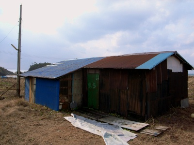 塩屋海岸のトタン屋根.jpg