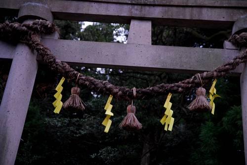 黄色い注連飾り.jpg