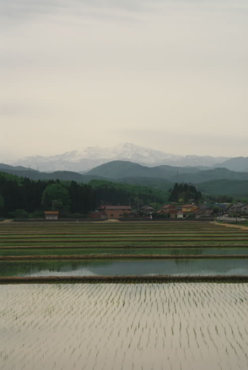 軽海からの白山.jpg