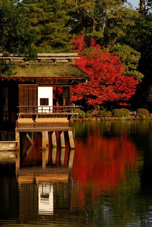 兼六園の紅葉3.jpg