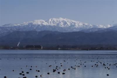 源平橋からの白山.jpg