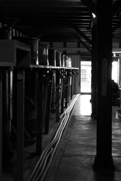 鹿野酒造3.jpg