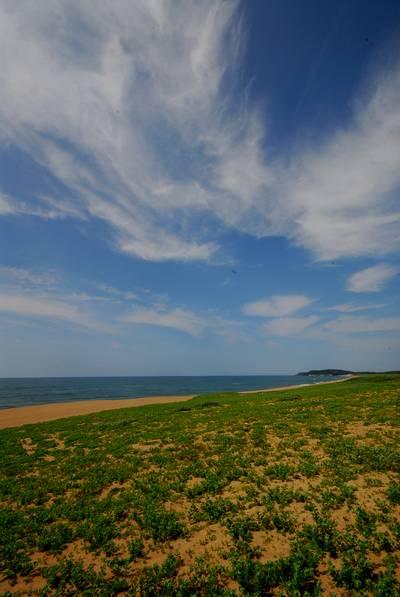 初夏の塩屋海岸4.jpg