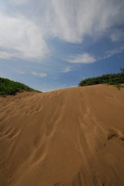 初夏の塩屋海岸5.jpg