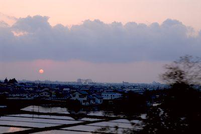 水田2.jpg