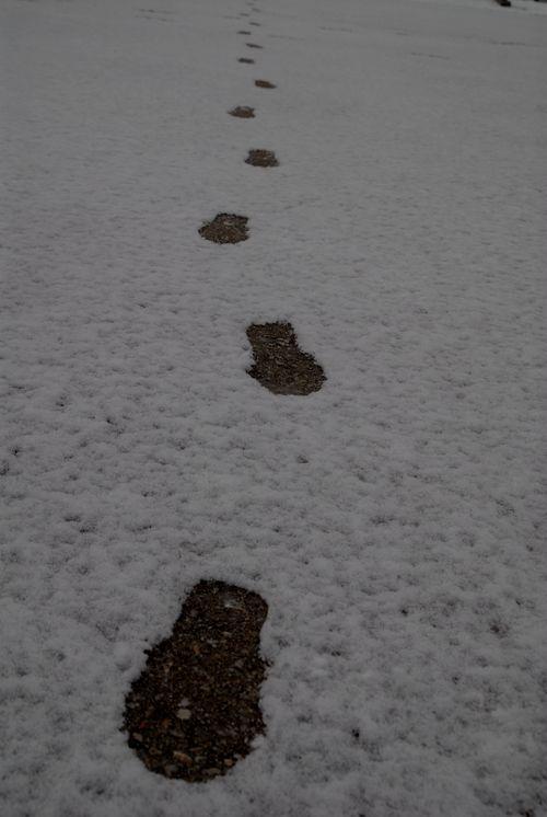 雪の金沢21世紀美術館3.jpg