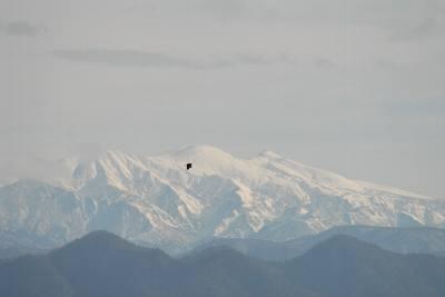 冬の白山.jpg