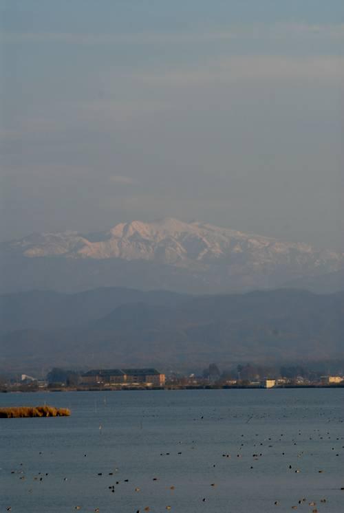 晩秋の白山.jpg